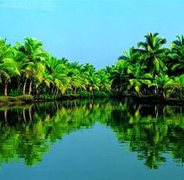 Cheap Flights to Kochi